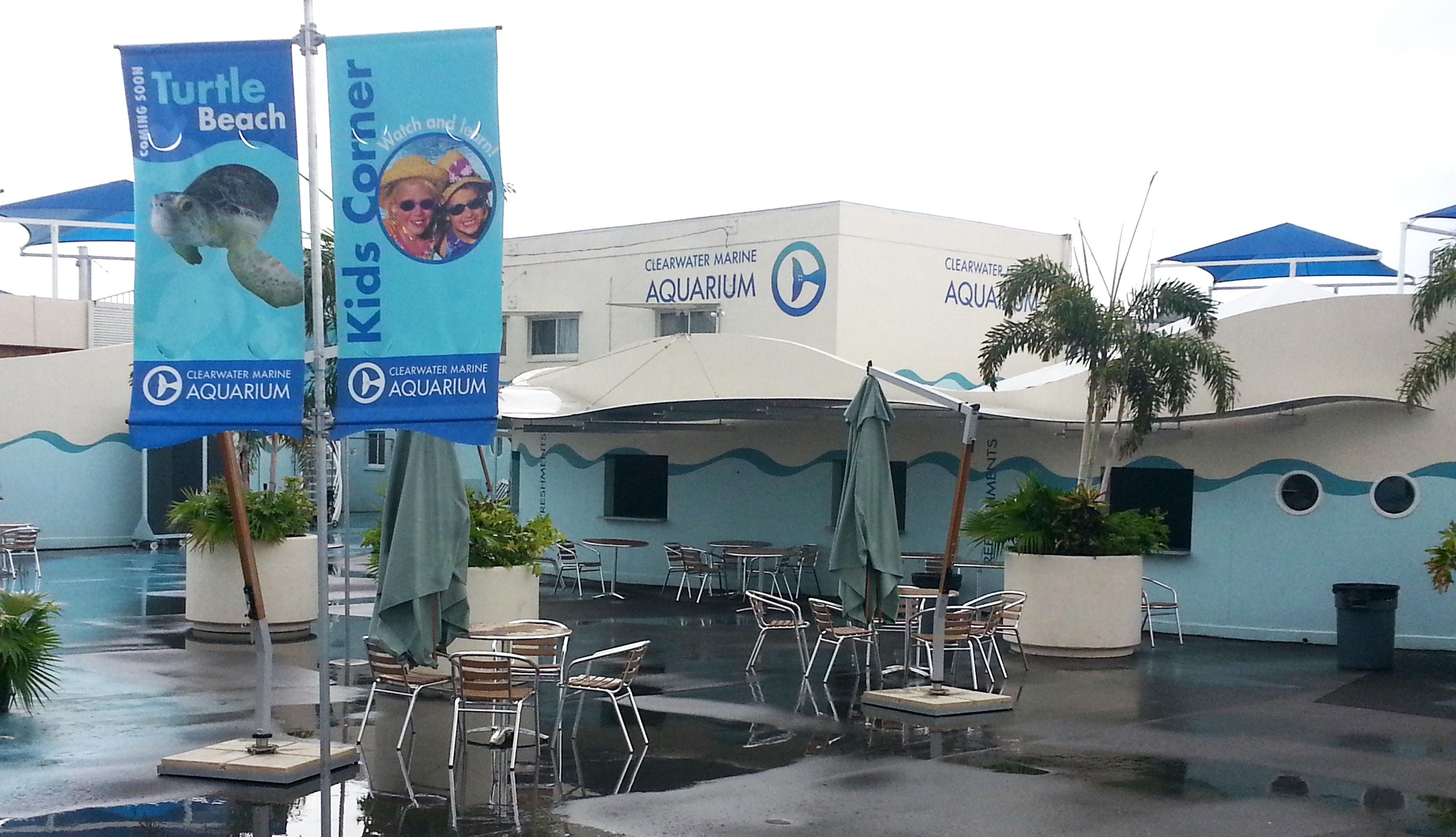 Clearwater Marine Aquarium Cma Floridaography